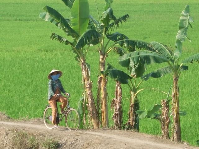 farmer ride